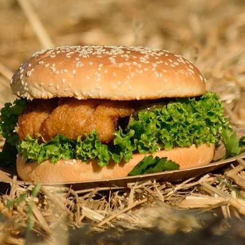 burger_955x500